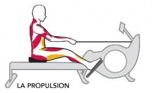 comment faire du rameur sans se faire mal au dos