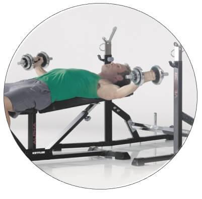 exercice de musculation avec banc