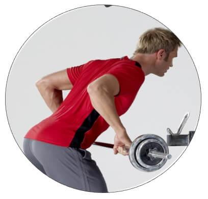 programme musculation avec banc multifonction