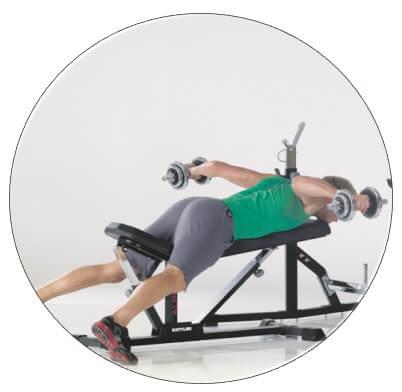 programme musculation banc muscu